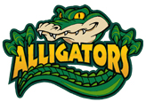 Applewood Alligator